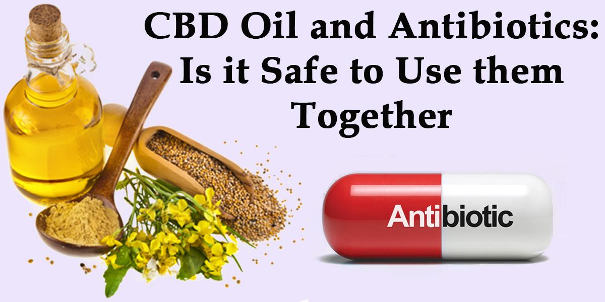 Featured Image of CBD Oil and Antibiotics