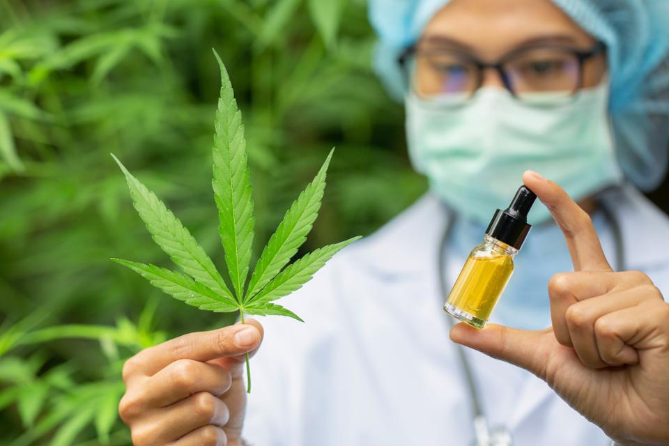 hemp medicine